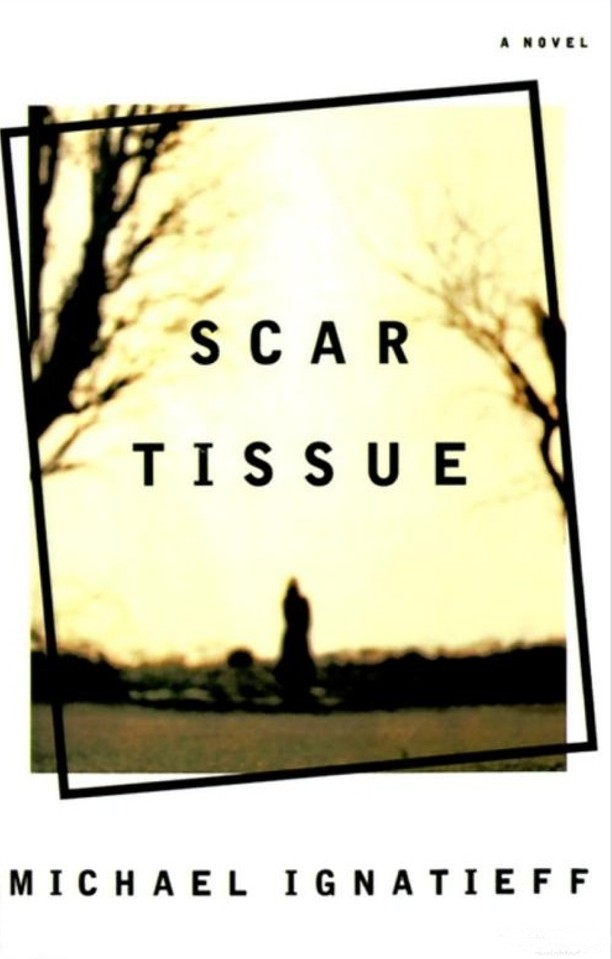 scar tissue book summary Scar tissue (book) : kiedis, anthony : as lead singer and songwriter for the red hot chili peppers, anthony kiedis has lived life on the razor's edge so much has been written about him, but until now, we've only had kiedis's songs as clues to his experience from the inside in scar tissue, kiedis proves himself to be as compelling a memoirist as he is a lyricist, giving us a searingly honest.